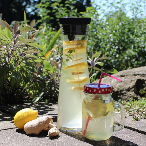 Hausgemachte Limonade Ingwer Zitrone Karaffe
